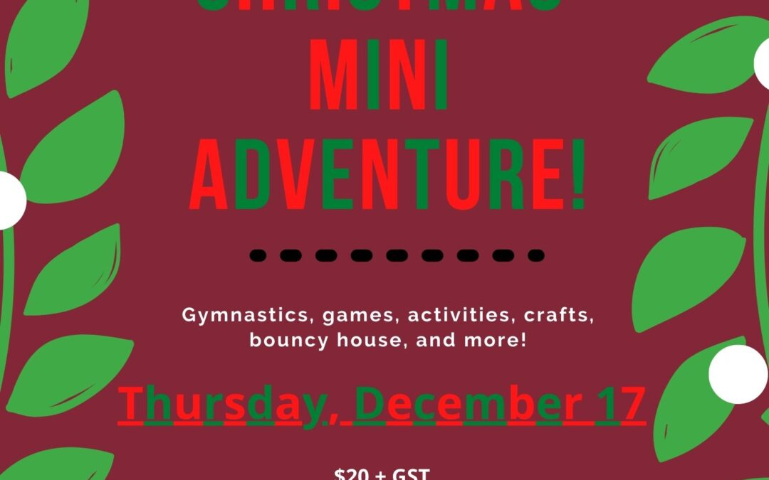 Mini Adventures – Christmas Party